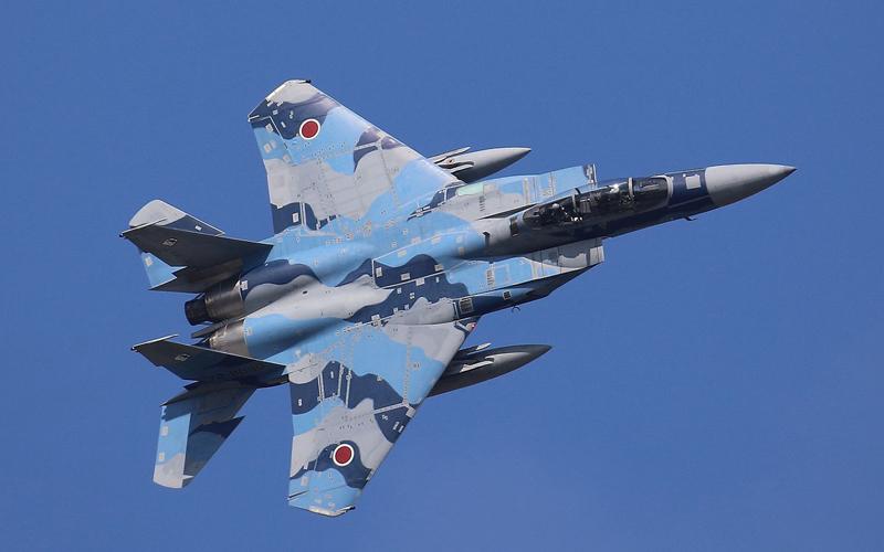 迷彩柄のF-15はアグレッサーの証